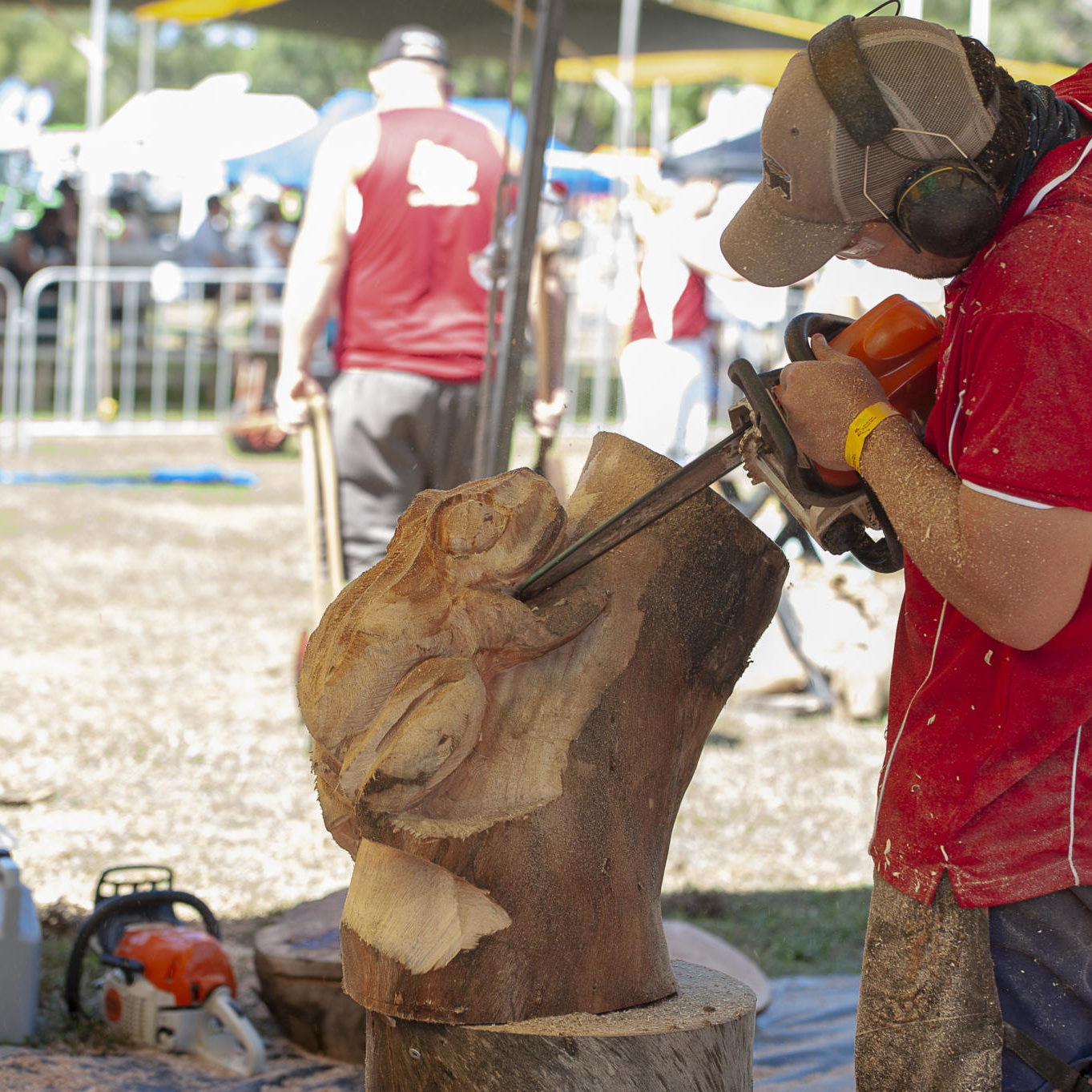 Woodchopping - Freds Pass Rural Show